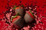 Chocolate Strawberry Paparazzi - 1800baskets.com